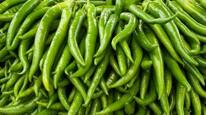 Fresh Natural Green Chilli