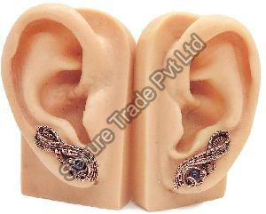 Human Ear Anatomy Model