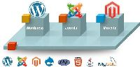 CMS Web Development Services