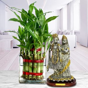Blessed Selection of Two Layered Bamboo Plant in Glass Pot with Radha Krishna Murti