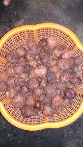 Dry Areca Nuts