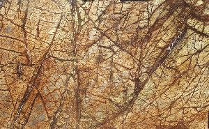 Rainforest Bidasar Brown Marble