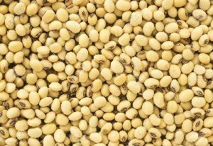 Chawli Beans