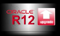 R12 Upgrade Services
