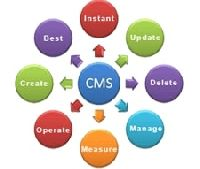 CMS Website Development