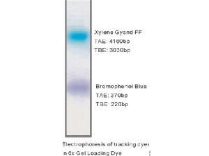 6X Gel Loading Dye