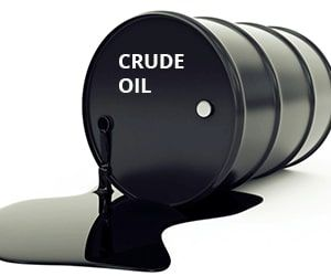 Crude Petroleum Oil