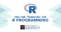 R Programming Online Training Services