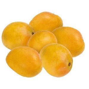 Fresh Badami Mango