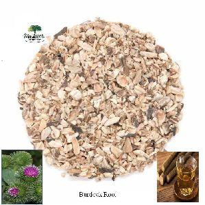Burdock Root Tea