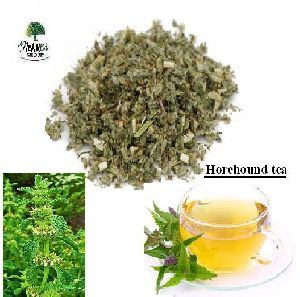 Horehound Tea