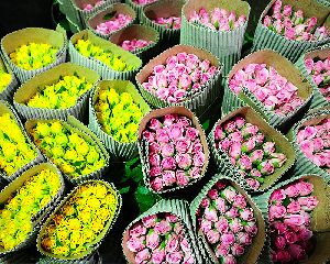 Flower Wrapping Corrugated Paper