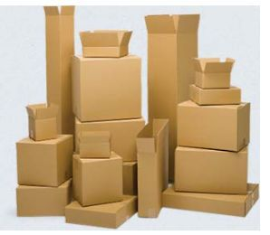 Corrugated Cartons and Trays
