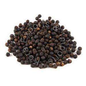 Hybrid Black Pepper Seeds