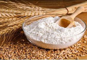 Ukraine Wheat Flour