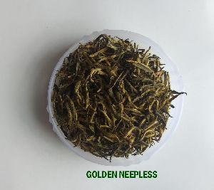 Golden Needle Tea