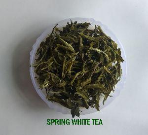 Spring White Tea