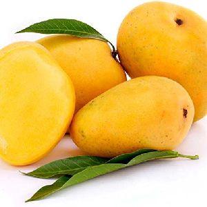 Fresh Neelum Mango