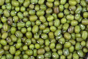 Whole Green Mung Beans