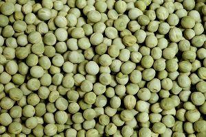 Whole Green Peas