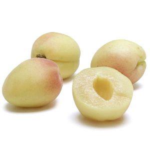 White Apricot