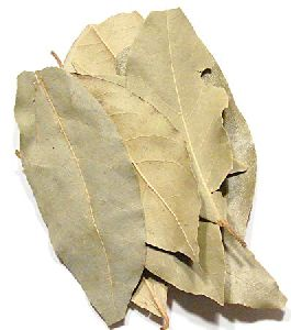 Dried Bay Leaf