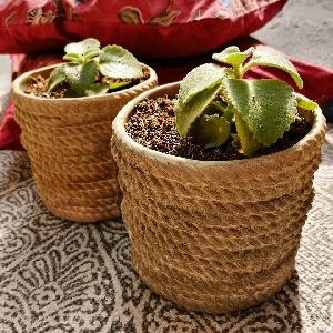 Rope Ceramic Planter