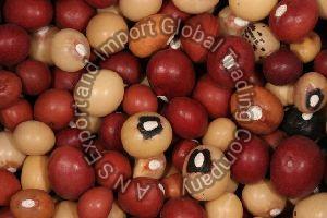 Jugo Beans