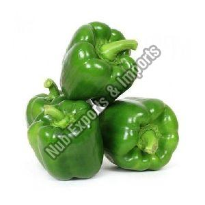 Fresh Green Capsicum