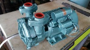 DMS 02 0.5 HP Slow Speed Monoblock Pump