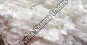Cotton Waste Comber Noil