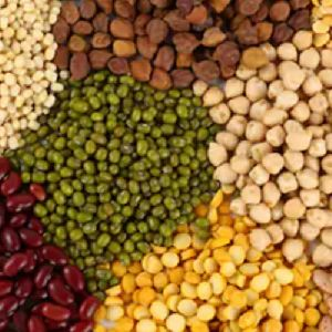 Pulses & Cereals