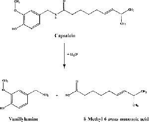 Capsaicin Acid