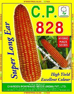 C.P. 828 Hybrid Maize Seeds