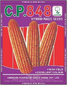C.P. 848 Hybrid Maize Seeds