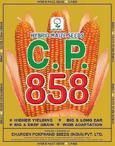 C.P. 858 Hybrid Maize Seeds