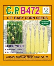 C.P. B472 Baby Corn Seeds
