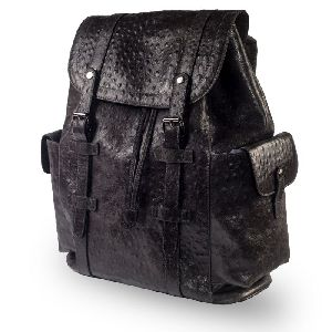 19AB-256 Stylish Backpack