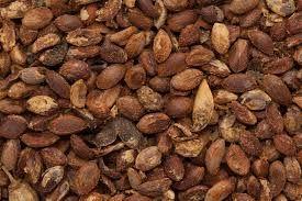 Jatamansi Seeds