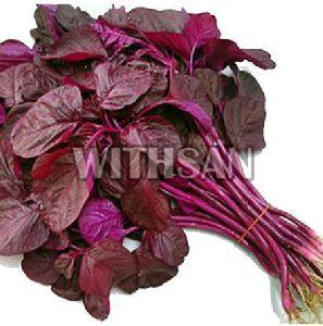 Fresh Amaranth Leaves