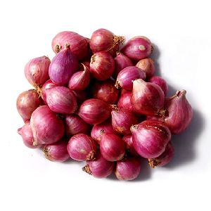 Fresh Sambar Onion