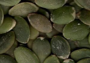 Natural Pumpkin Seeds