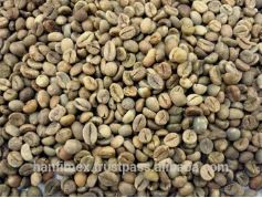 Washed Robusta Coffee Beans