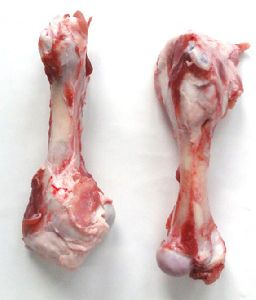 Frozen Pork Humerus Bone