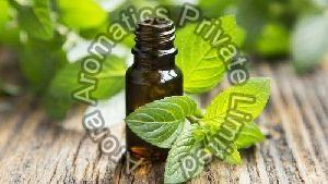 Liquid Mint Terpene