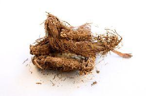 Jatamansi Herb