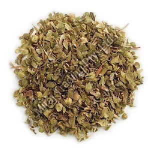Organic Oregano Leaves