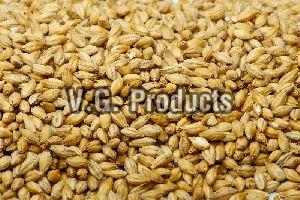Barley Husk