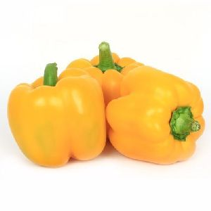 Fresh Yellow Capsicum