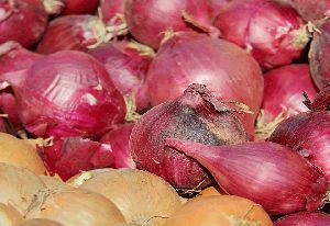 Fresh Podisu Shallot Onion